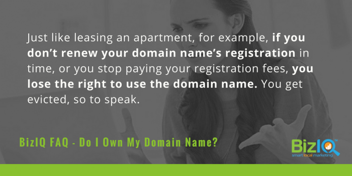 Do I own my domain name?
