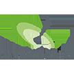 Image: searchmetrics logo text