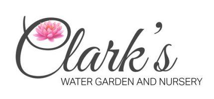 Logopg Clarks